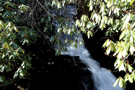 6 2013-01-21-Falls on Long Branch, Hendersonville Reservoir Dam, and Falls on Fletcher Creek=Nikon D310045