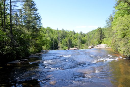 22 2013-05-25-Dupont State Forrest-Tripple and High Falls-Nikon D310077