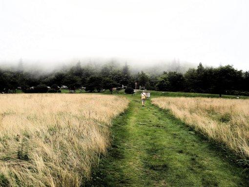 2013-08-17-Grayson Highlands State Park-Massie Gap-Sony Cybershot DSC-HX200V162