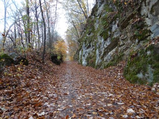 2014-11-01-Home and The Virginia Creeper Trail-Alvarado Station-Sony Cybershot DSC-HX200V123