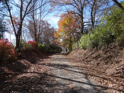 2014-11-15-Elizabethton Linear Path and Tweetsie Trail and Babies-Sony Cybershot DSC-HX200V153