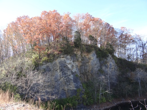 2014-11-15-Elizabethton Linear Path and Tweetsie Trail and Babies-Sony Cybershot DSC-HX200V188