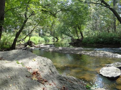 2015-09-06-Warren Wilson College River Taril Sony DSC-HX200V246