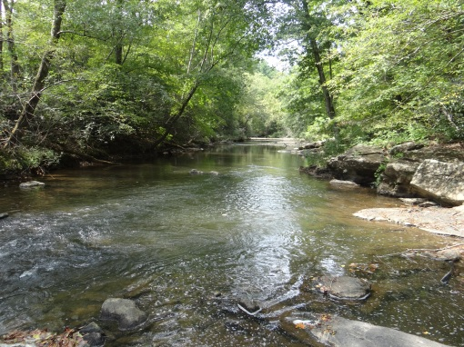 2015-09-06-Warren Wilson College River Taril Sony DSC-HX200V308