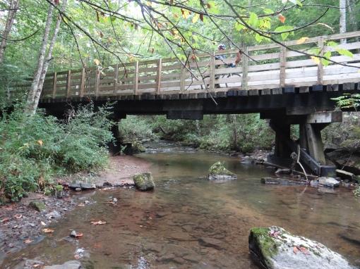 2015-09-13-Virginia Creeper Trail-Green Cove Station to Grassy Ridge Road 5RT-Sony DSC-HX200V342