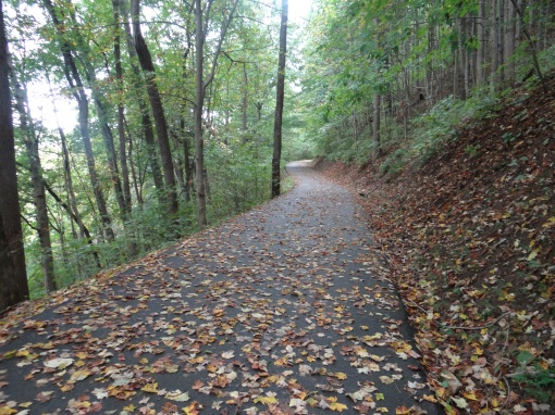 2015-09-26-Kingsport Greenbelt Trail-Sony DSC-HX200V76