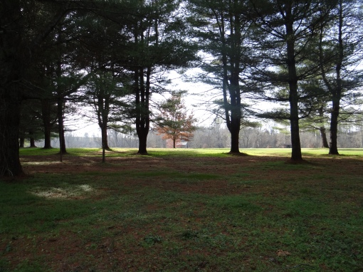 2015-12-12-Davy Crocket State Park-SONY-DSC-HX200V-110