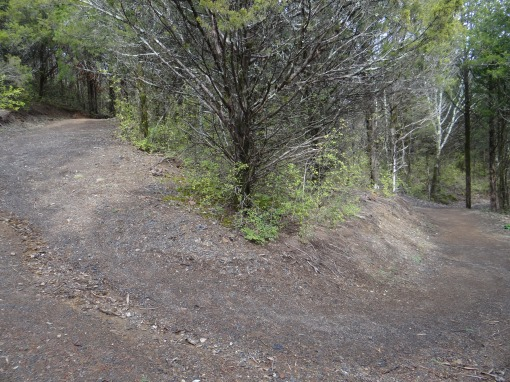 22016-01-09-Greeneville Creation Health Trail-SONY-DSC-HX200V-69