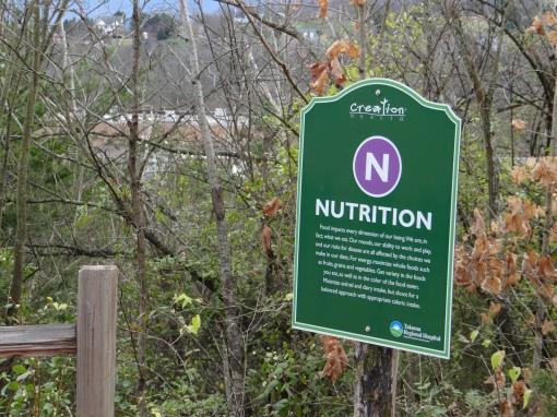 22016-01-09-Greeneville Creation Health Trail-SONY-DSC-HX200V-75