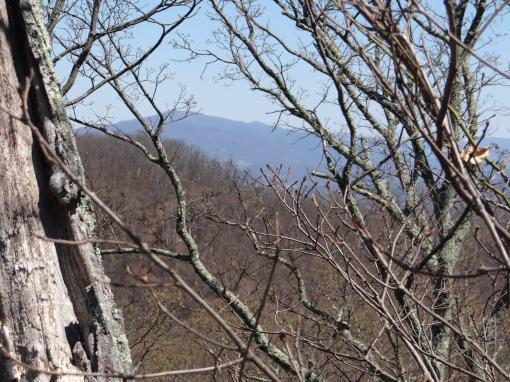 2016-04-03-Winged Deer Park and Buffalo Mountain Huckleberry Knob Trail-SONY-DSC-HX200V-242