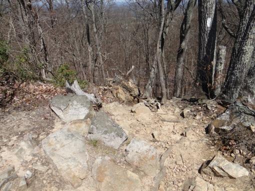 2016-04-03-Winged Deer Park and Buffalo Mountain Huckleberry Knob Trail-SONY-DSC-HX200V-244