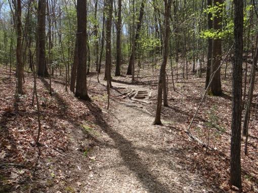 2016-04-23-North Carolina Arboretum-SONY-DSC-HX200V-267