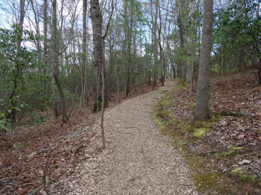 2016-04-23-North Carolina Arboretum-SONY-DSC-HX200V-268