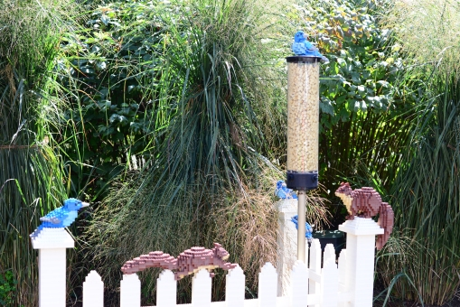 19-birds-vs-squirrels-at-feeder